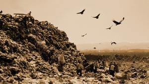 Горы мусора в Славянке